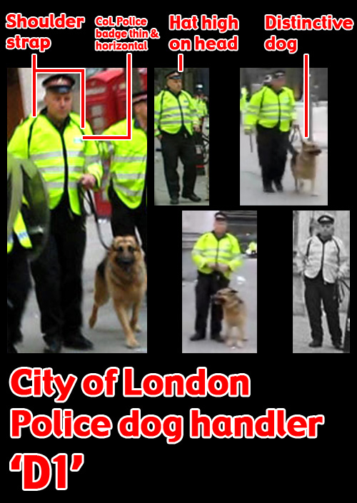 City of London Police dog handler 'D1'