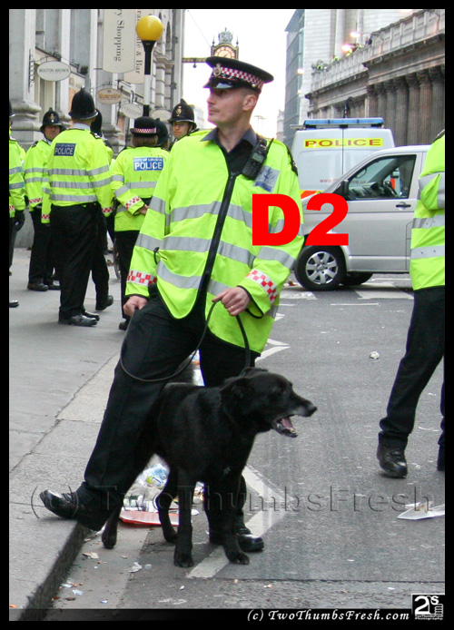 G20 Police Witnesses IDed: City of London Police dog handler 'D2'