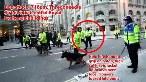 G20 Tomlinson assault cop at earlier incident?