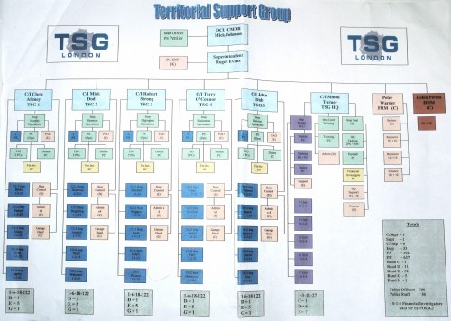 Territorial Support Group command structure
