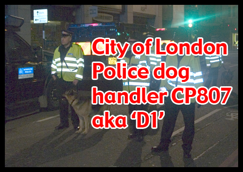 G20 Police Witnesses IDed: CP807 aka 'D1'