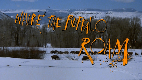Where The Buffalo Roam title screen